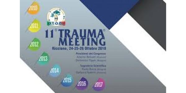 Trauma Meeting 2018